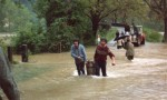 Inondations de mai 1983